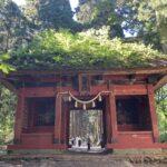 「戸隠神社」隋神門の写真